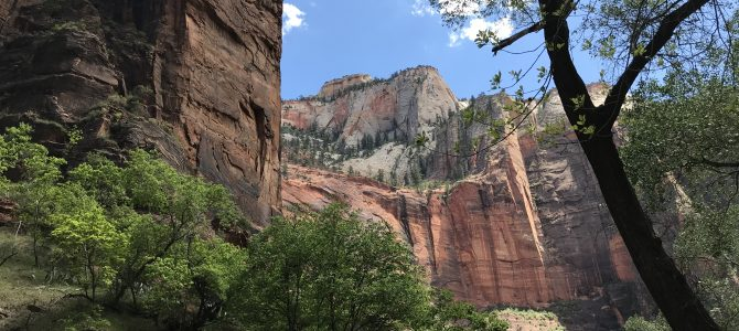 VISIT ZION NATIONAL PARK: WHERE TO STAY